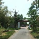 hortobagy-hnp-madarpark-allakorhaz