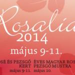 Rosalia Rosé Fesztivál 2014